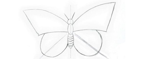 Kami Menarik Seekor Rama Rama Dengan Kanak Kanak Cara Menggambar Rama Rama Secara Berperingkat Dengan Pensil